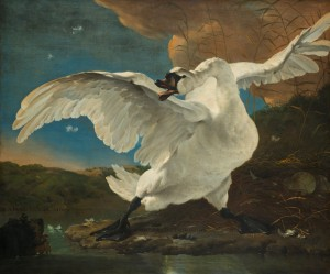 The Threatened Swan by Jan Asselijn, you can see this beauty with your own eyes at the Rijksmuseum