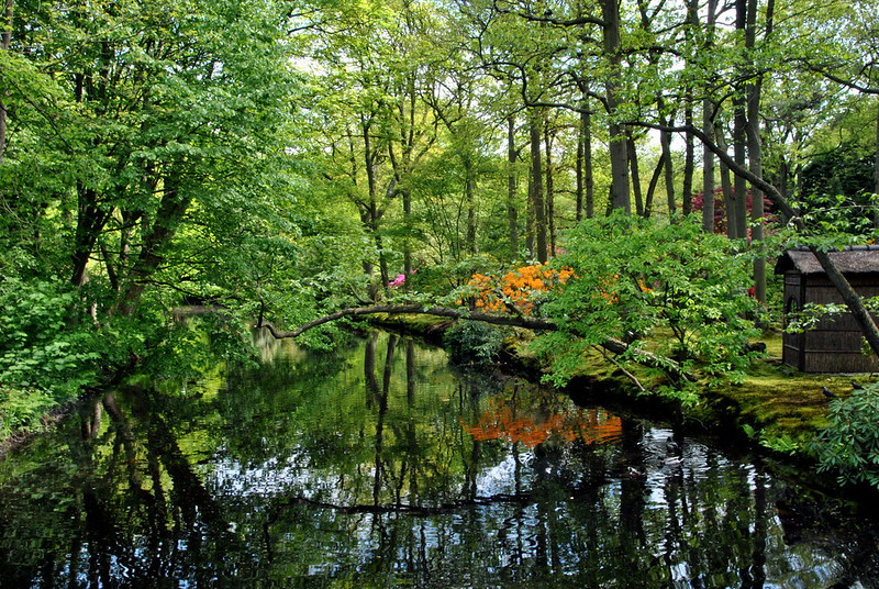 The-Japanese-gardens-in-Park-Clingendael-The-Hague