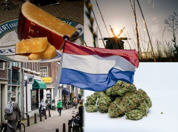 becoming Dutch, Immigrating, Immigrations, Migrating