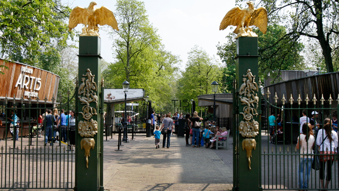 Artis zoo in amsterdam