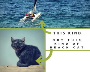 NOT this kind of Beach Cat