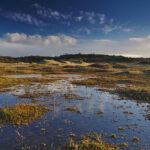 Nationaal_Park_Zuid-Kennemerland_(20)