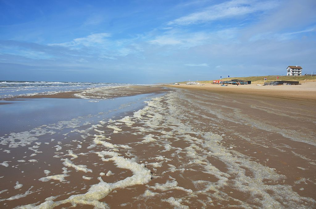 photo-of-bergen-aan-zee-beach-holland