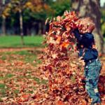 dutch kids leaves autumn