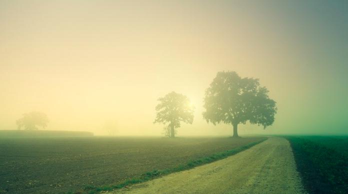 fog netherlands weather