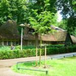 Wilhemina park Utrecht