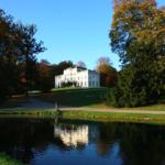 park sonsbeek forest
