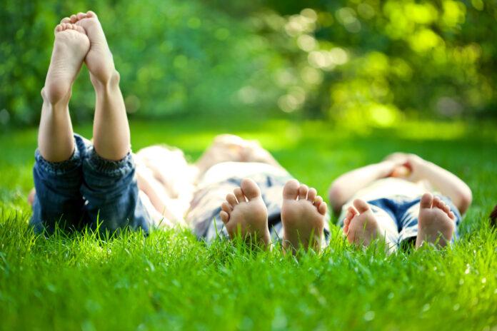 children-sunny-weather-grass
