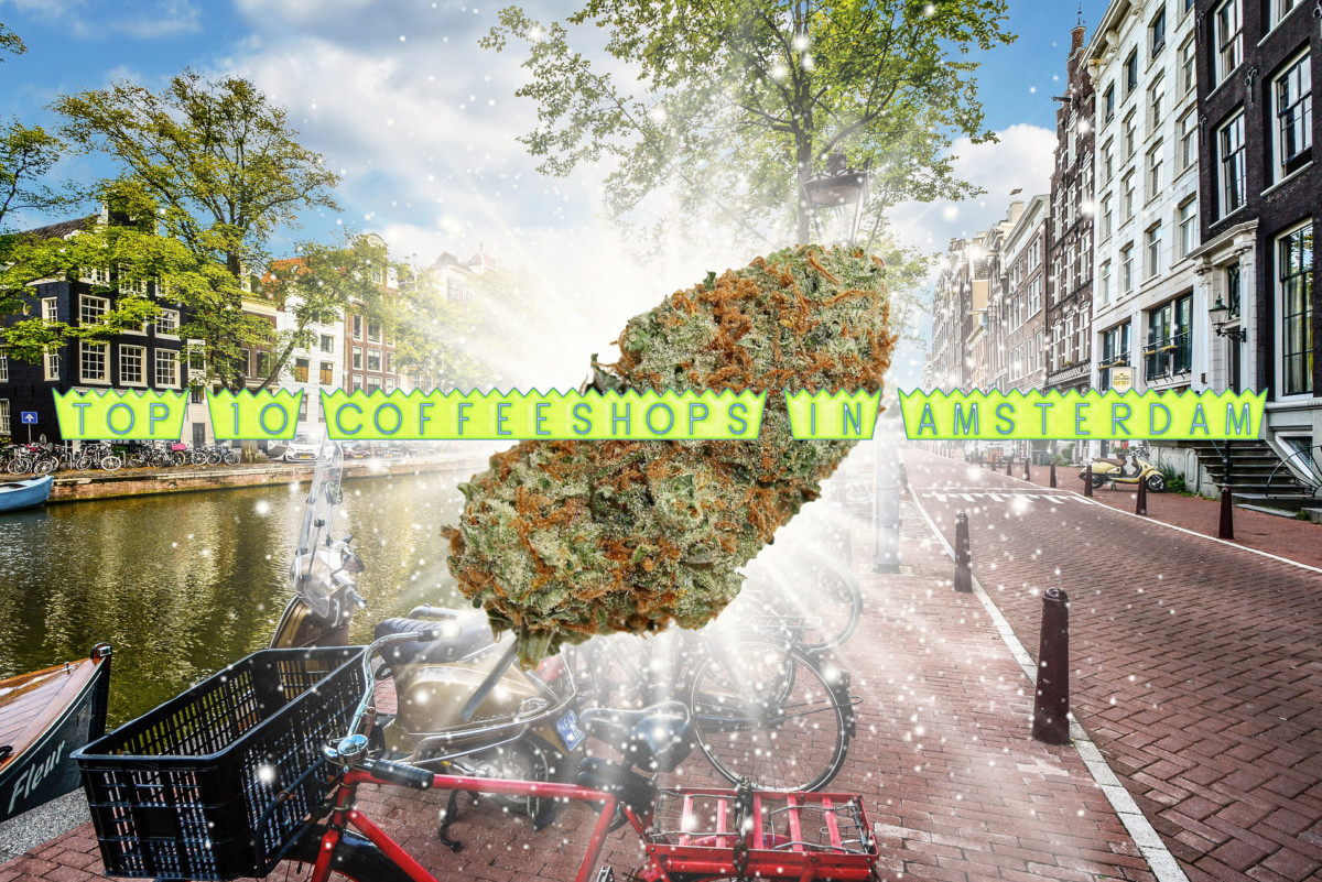 Best Coffeeshops in Amsterdam, The Best Spots to Smoke this Summer