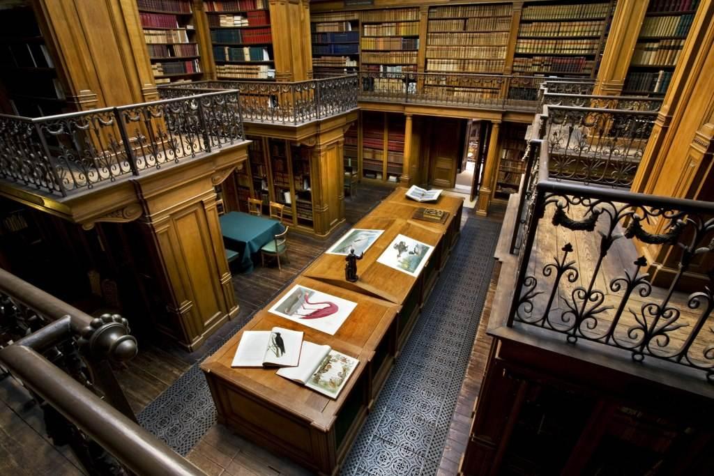 photo-of-library-at-teylers-museum-haarlem