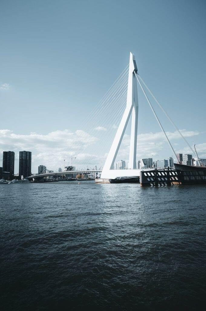 photo-of-erasmus-bridge-in-rotterdam