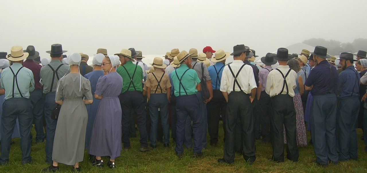 Amish A Secret Life Nederlands.Ten Alternative Actions For Dutch Re Colonization Of The Usa
