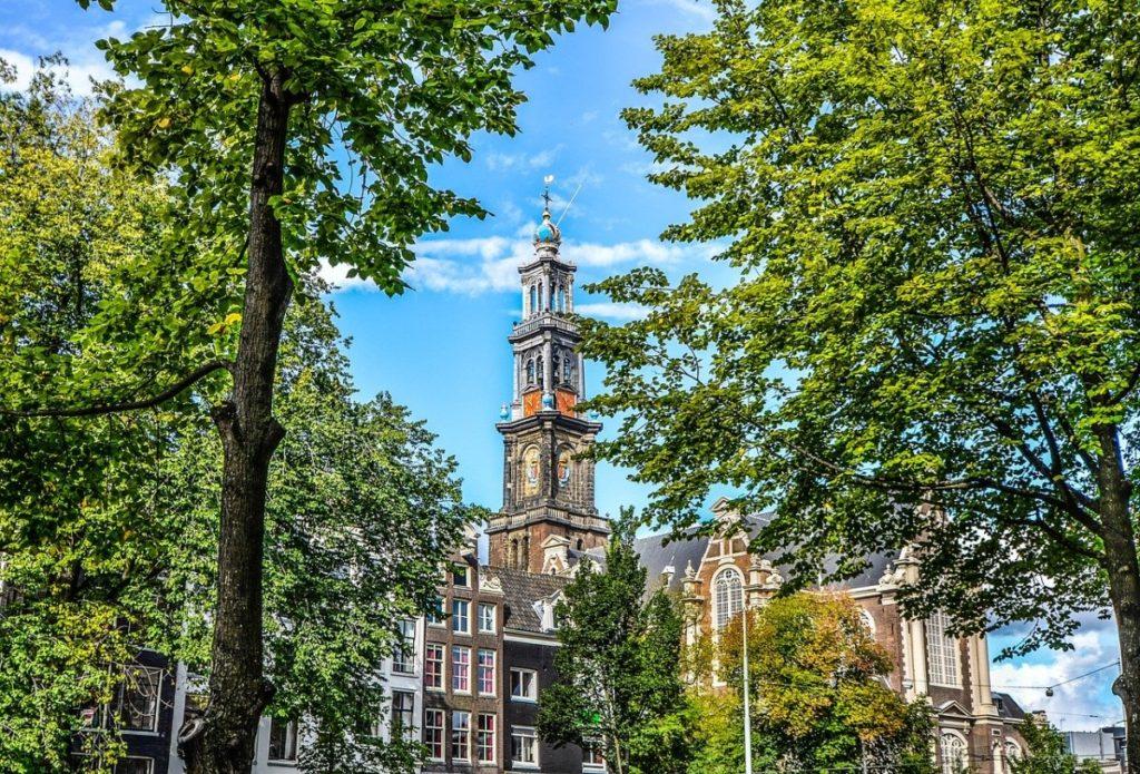 amsterdam-tower-in-greenery