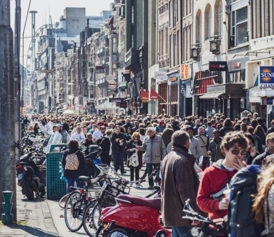 things to know before learning dutch