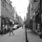 move to Amsterdam
