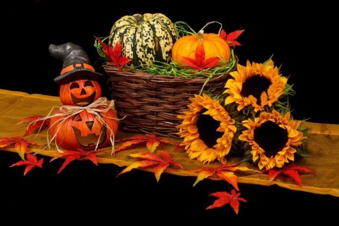 halloween in the netherlands