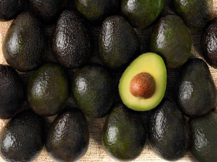 Avocado bunch