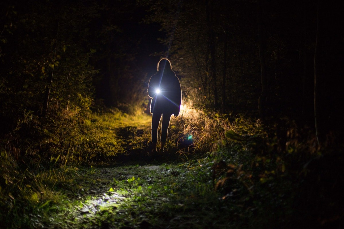 Child in forest with flashlight