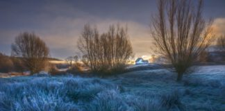frosty countryside grass