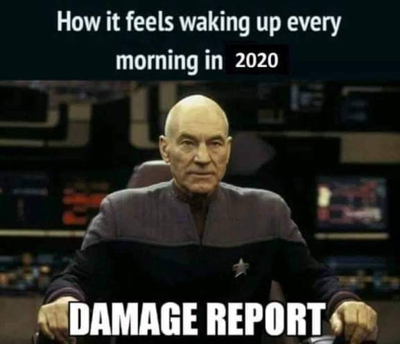 waking up every morning in 2020 damage report