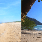 costa rica netherlands beach