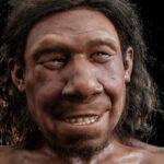 dutch-neanderthal-rijksmuseum