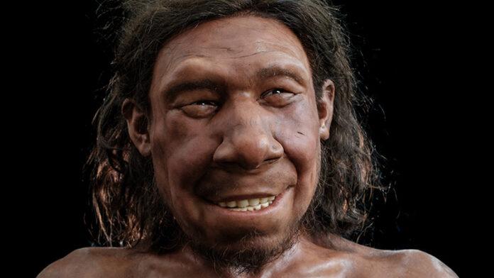 dutch-neanderthal-reconstruction