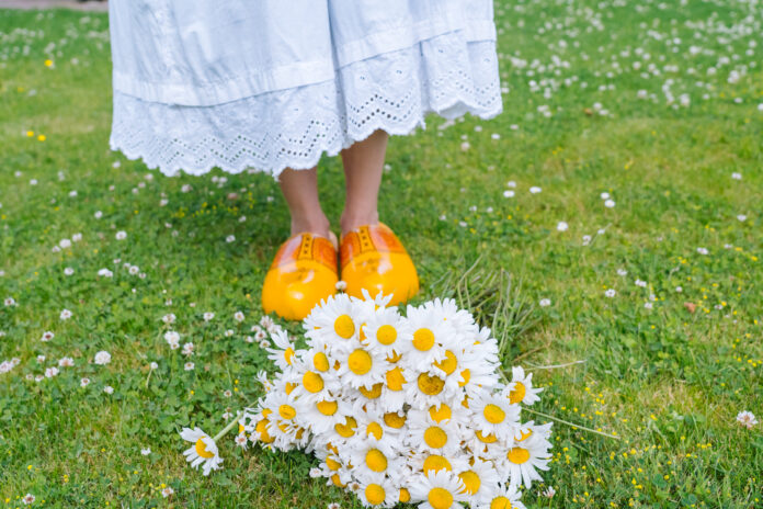 person-wearing-dutch-clogs-behind-flowers