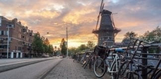 expat in the netherlands