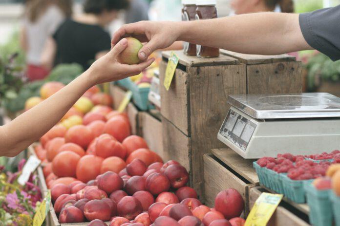 photo-person-buying-a-fair-trade-apple-at-a-dutch-market