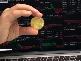 netherlands-cryptocurrency