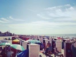 heatwave in the Netherlands