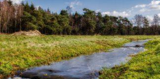 Deventer-natural-park-in-the-Netherlands