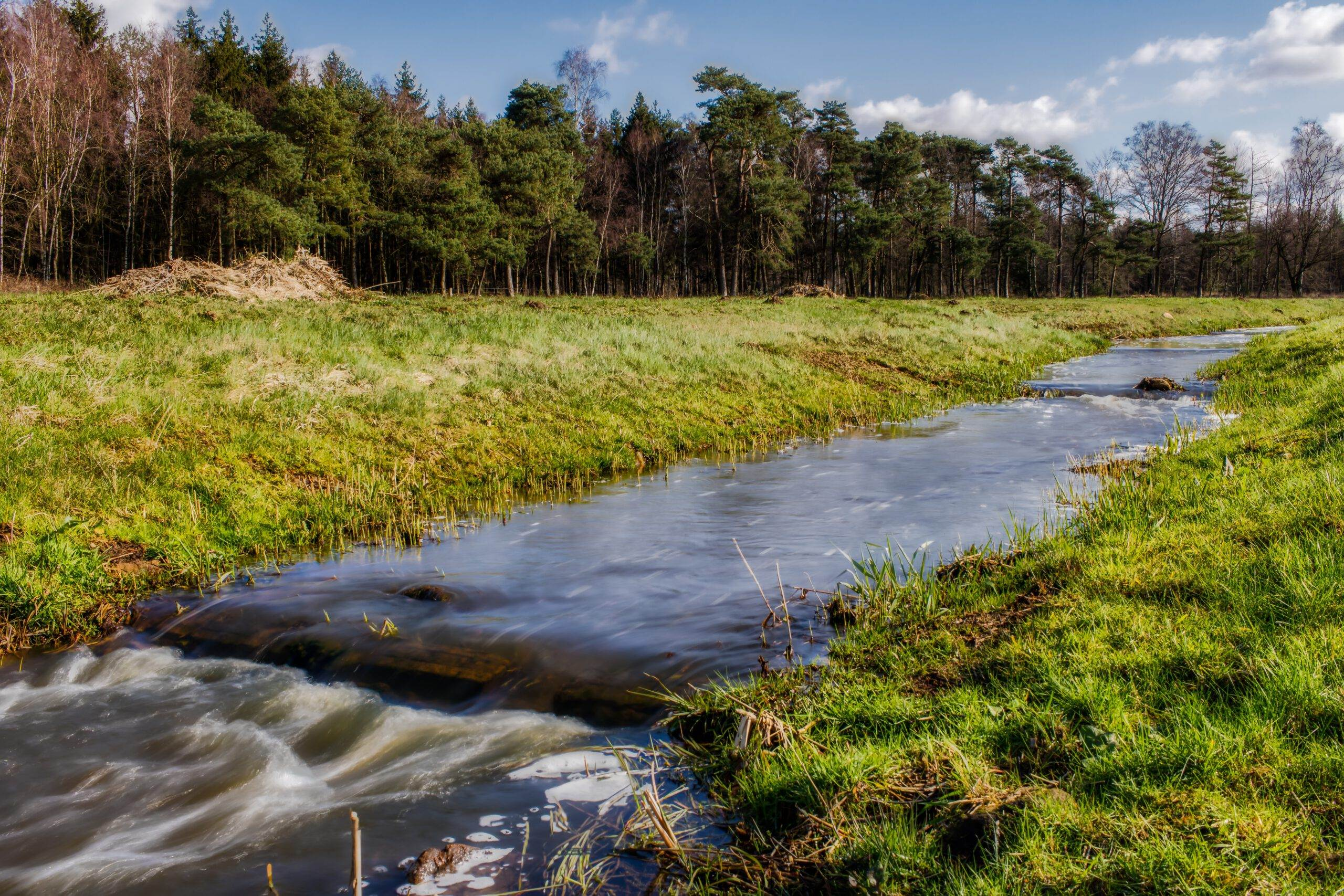 natural campsites in the netherlands