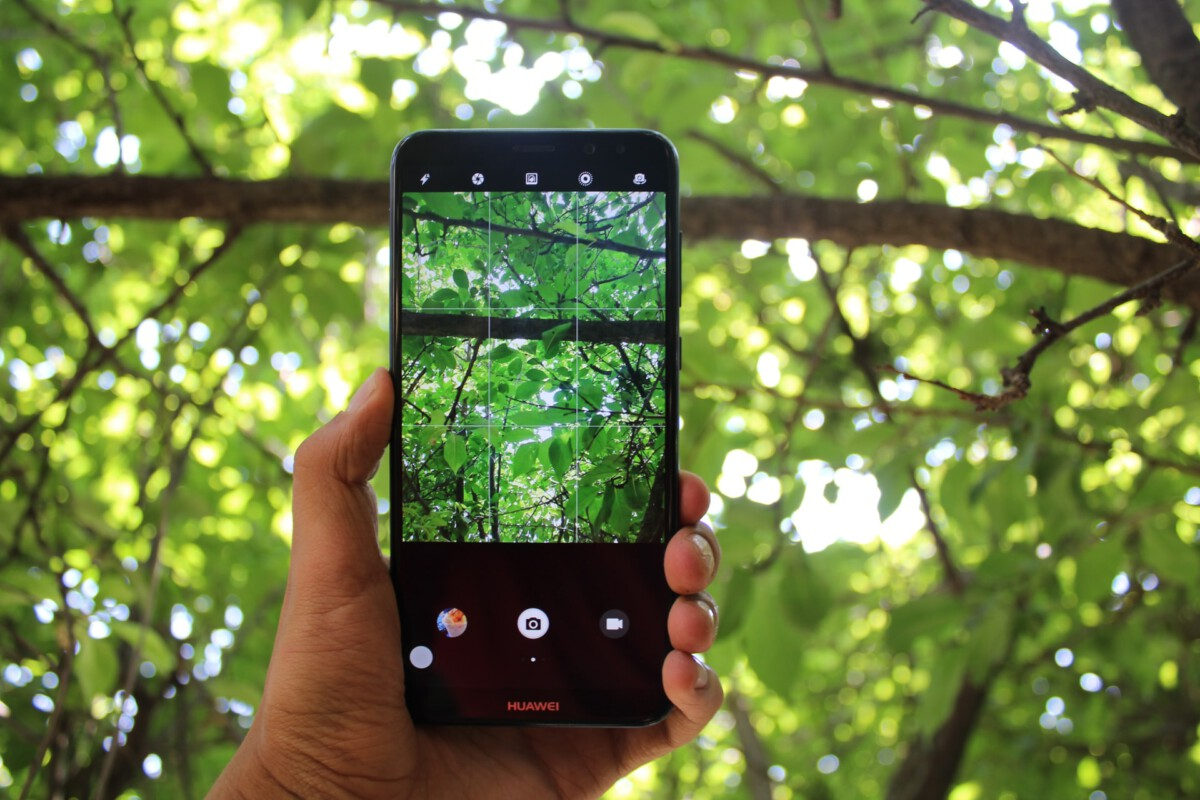 Photo-of-hand-holding-mobile-phone-and-taking-a-picture-of-a-tree