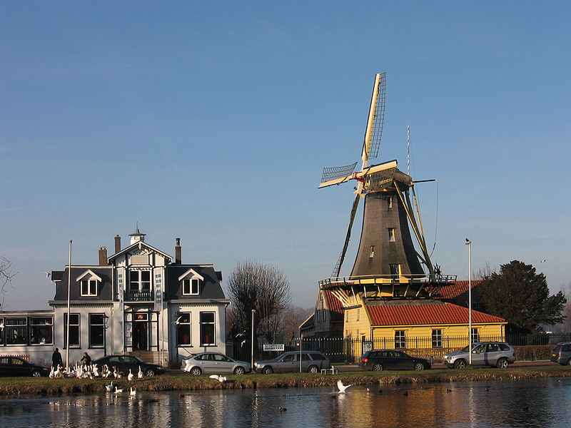 A windmill and large house sit behind the lake.