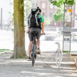 a man riding his bicycle with running dog
