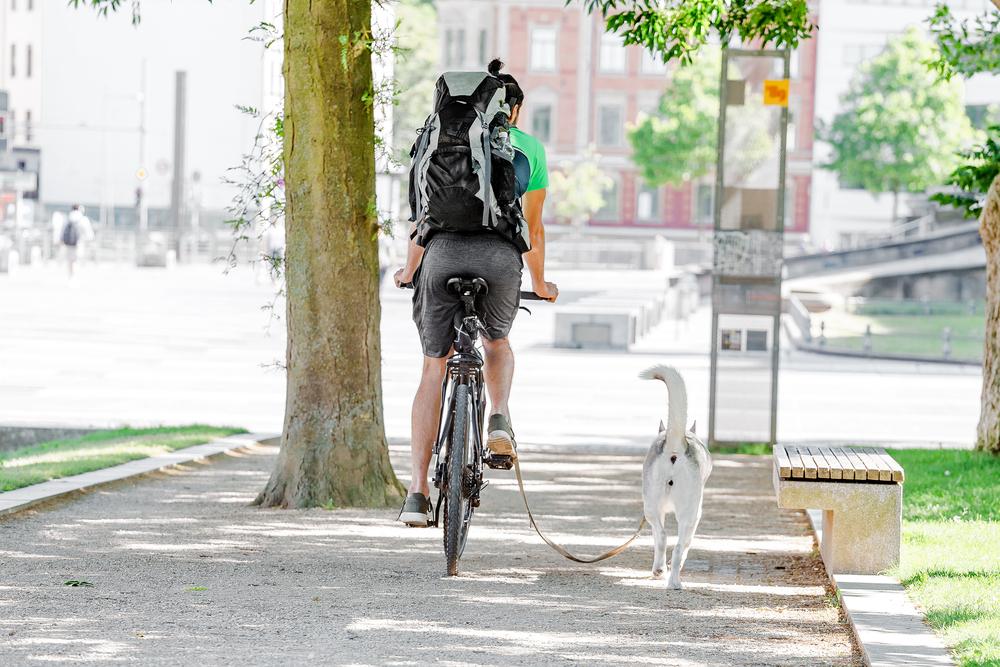 photo-of-man-riding-bike-with-dog-on-leash
