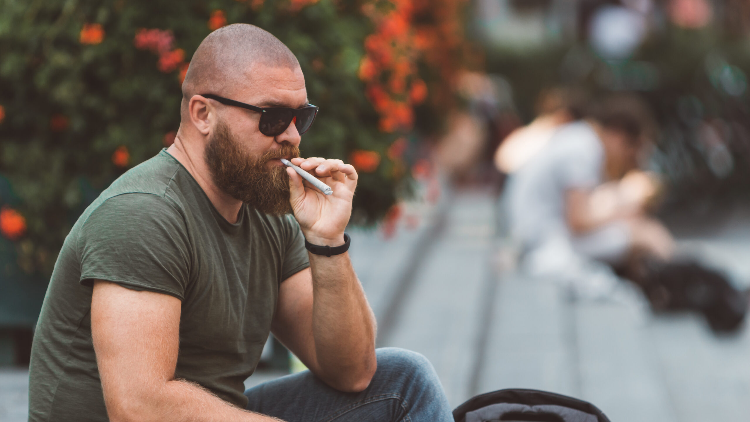 photo-of-man-sitting-in-park-in-amsterdam-smoking-joint