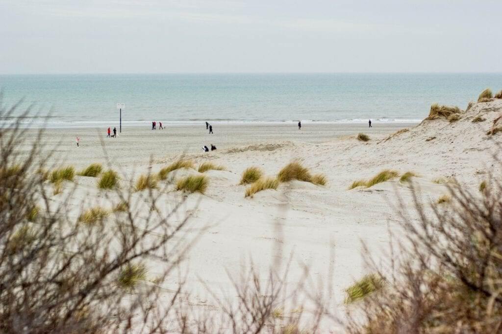 photo-of-hoek-van-holland-beach