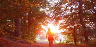 running-netherlands