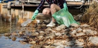 Plastic Fishing in Amsterdam