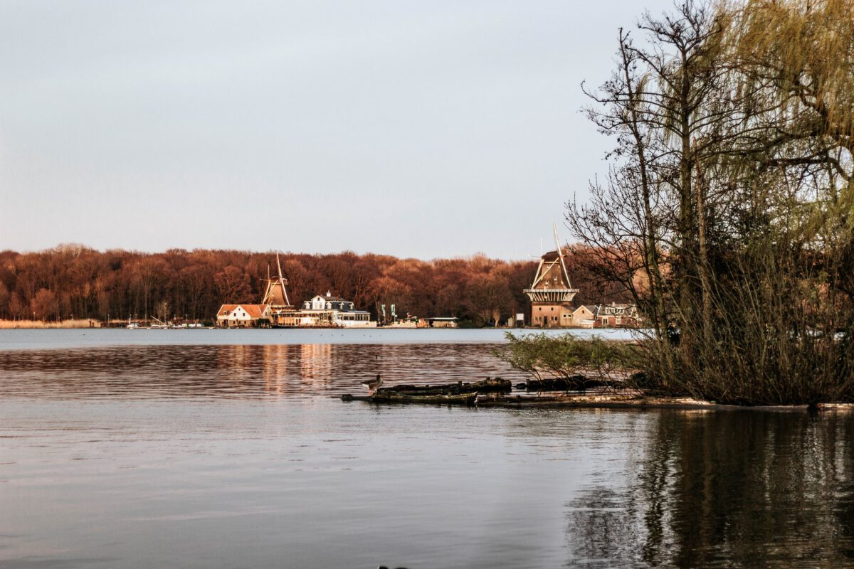 photo-of-views-at-the-kralingse-plas-in-rotterdam