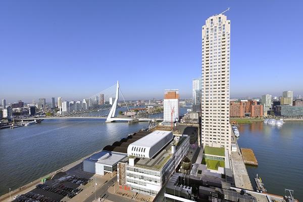 neighborhoods of Rotterdam