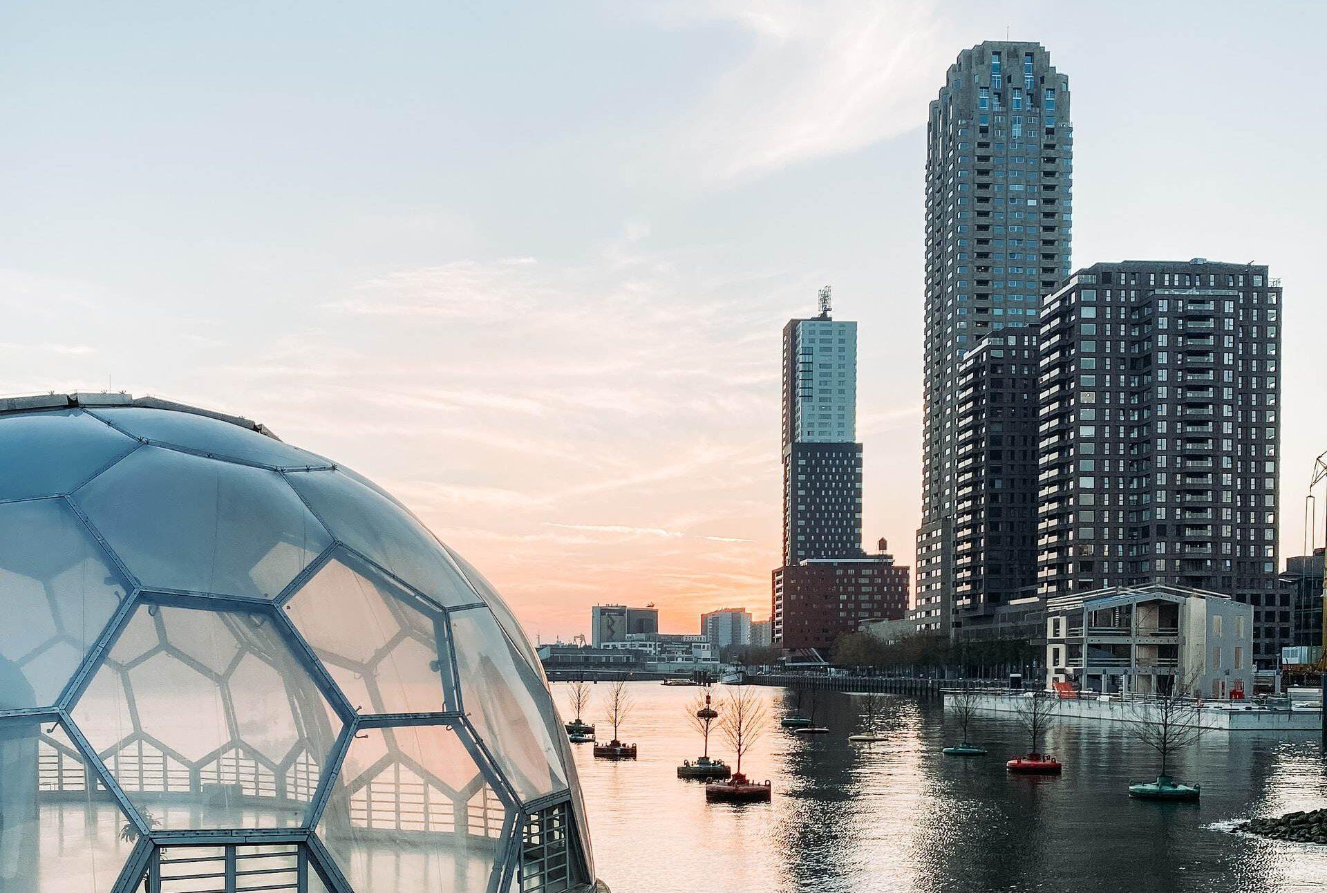 Photo-of-Erasmus-Bridge-Rotterdam-skyscrapers-in-background