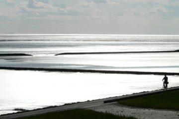 north-sea-dijk