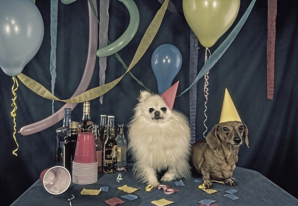 Patrick Holford: party animals can overdo fun, food, without ...   710x1024