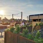 plnt rooftop leiden Abuzer DutchReview (2)