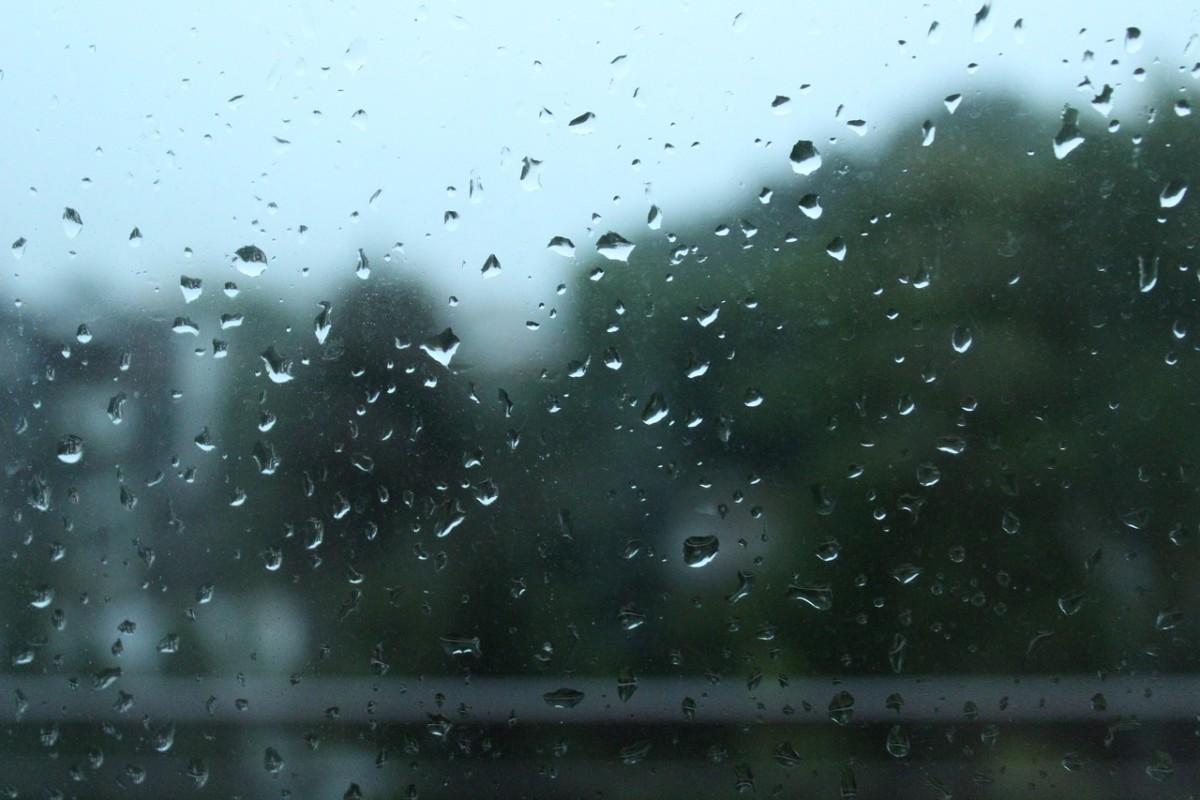 netherlands rain weather