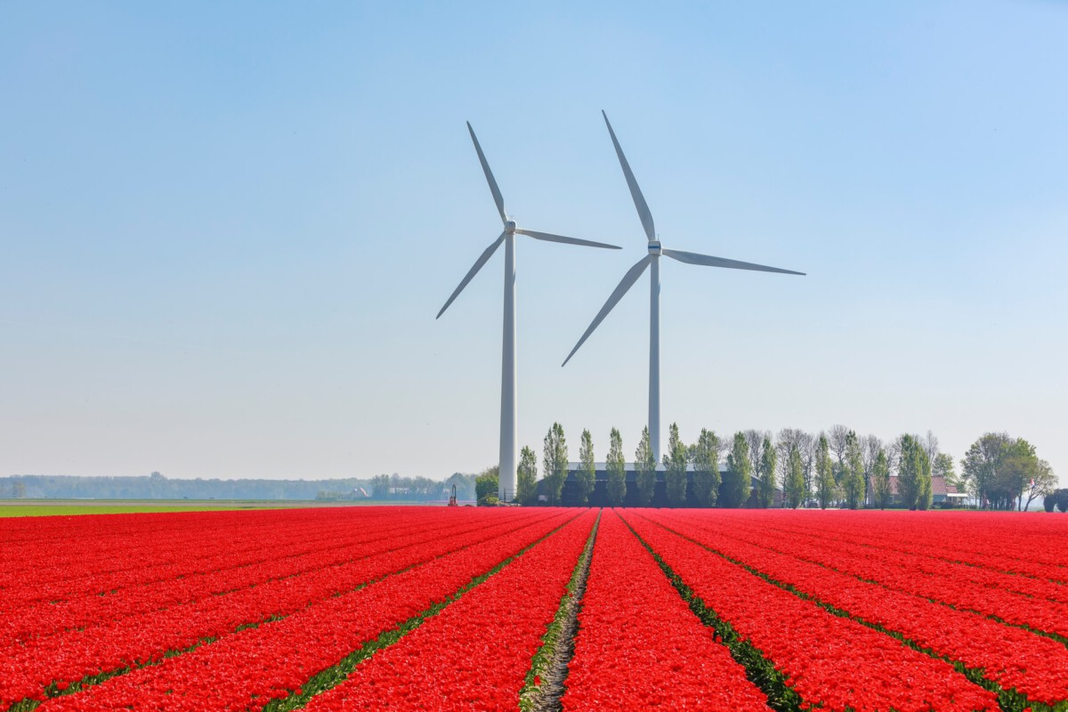 photo-of-wind-turbines-generating-renewable-energy-in-the-netherlands